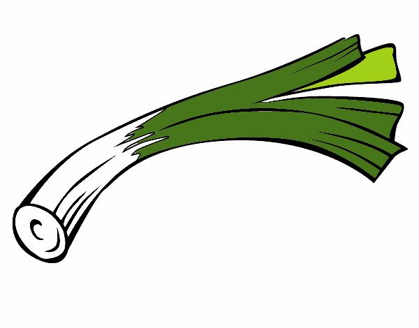 puerro-comida-verduras-11701281.png